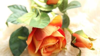 1Pc Real Touch Artificial Rose Fake Flower Wedding Bouquet Party Home Decor - Orange