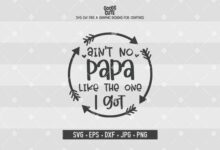 Ain't No Papa Like The One I Got SVG, Father's Day SVG, Newborn Digital Files for Silhouette, Cricut