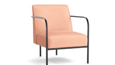 Capital Chair - Blush Endurance Velvet / Black