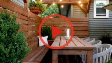Eyesore to Outdoor Oasis: Backyard Patio Reveal