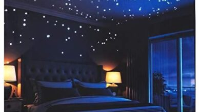 Glow in The Dark Stars Wall Stickers,252 Adhesive Dots and Moon for Starry Sky, Decor for Any Room by LIDERSTAR,Bright and Realistic.(Galaxy) - Default