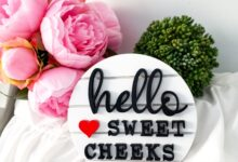 Hello Sweet Cheeks Bathroom Signs on 6 Shiplap like Round Sign Finished or Unfinished | Bathroom Sign | Tiered Tray Sign | Shiplap Round - Unfinished
