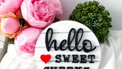 Hello Sweet Cheeks Bathroom Signs on 6 Shiplap like Round Sign Finished or Unfinished   Bathroom Sign   Tiered Tray Sign   Shiplap Round - Unfinished