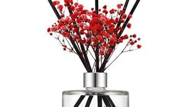 Preserved Real Flower Reed Diffuser - Black Cherry / Real Flower/6.7oz