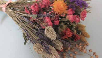 Spring Brights Dried Flower Bouquet Gift Sets - Dried Flower Bouquet Only