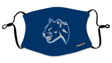 The New School Cougars Blue Face Mask - Youth